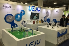 Leju Events 6